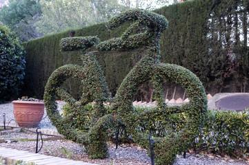 bicicleta vegetal-01