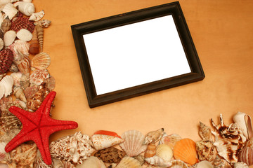 shells and blank frame