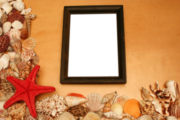 shells and a blank frame
