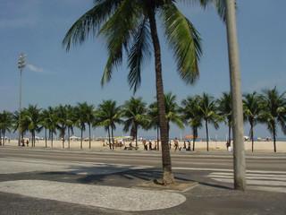 plage et cocotiers  copacabana rio de janeiro