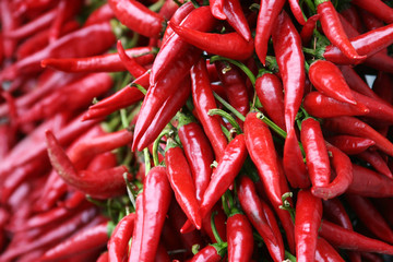 Aluminium Prints Hot chili peppers red chili pepper strings in hungary