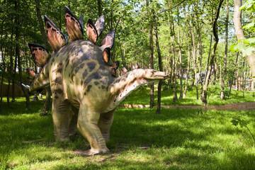 Fototapeta premium uzbrojony stegosaurus