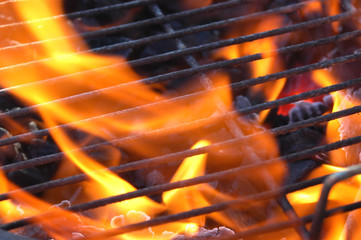 Aluminium Prints Grill / Barbecue flames and grill