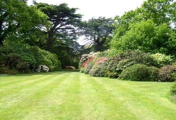 Papiers peints Jardin garden