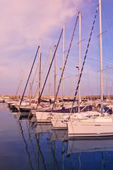 sailboats anchored at port
