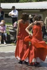 flamenco en plein air