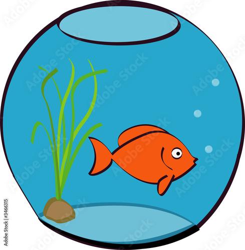 Poisson rouge dans un bocal photo libre de droits sur la for Acheter poisson rouge boulogne billancourt
