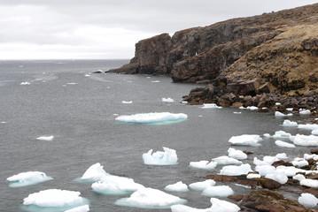 bay de verde, newfoundland icebergs
