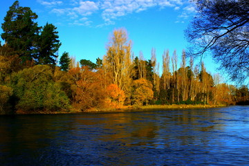 autumn river bank