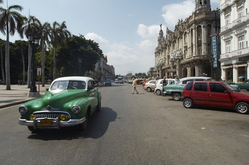 Garden Poster Cars from Cuba la havana