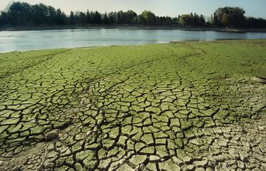 drought-6a