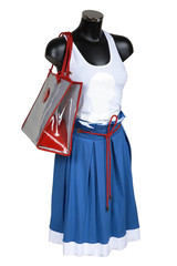 Skirt, vest and bag on a white background