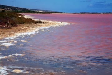 Pinker See Australien_07_1137