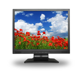 LCD screen with gorgeous summer landscape