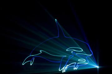 laser dauphin