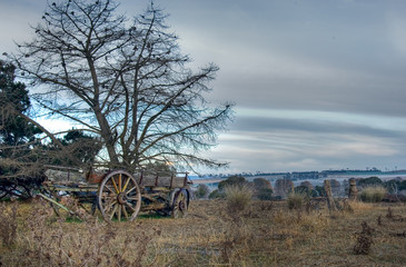 an old cart lays in the field forgotten and neglected