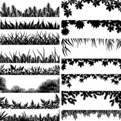 Plant borders