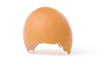 an eggshell with white background