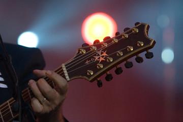 manche guitare
