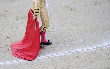 Bullfighter's Cape