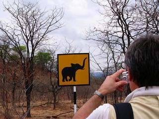 Warning - elephants!