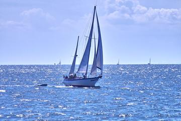 voilier en mer