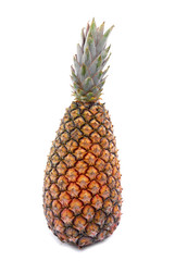 One pineapple on white background .