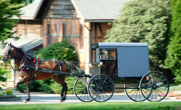 Amish Buggy in Lancaster, PA