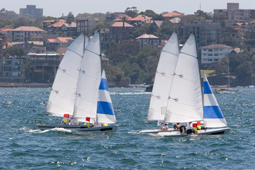 Sailing boats racing on the harbour