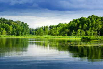 Obraz Lake and forest. - fototapety do salonu