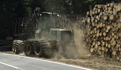 Waldarbeit für die Forstwirtschaft mit Maschine