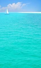 Pretty Sea and Sailboat