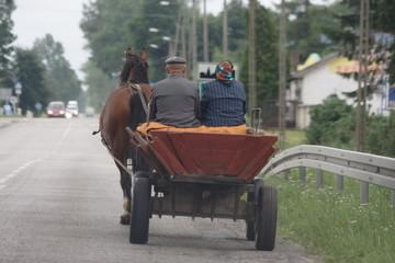 Carriole à cheval