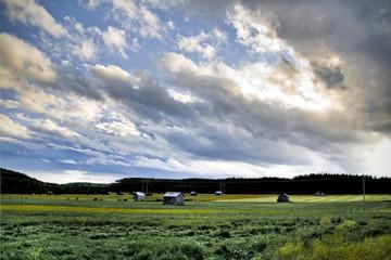 A Swedish rural scenery