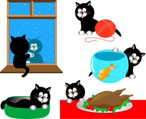 Printed kitchen splashbacks Cats Cartoon cat series
