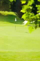 Pratique du sport : Golf 28