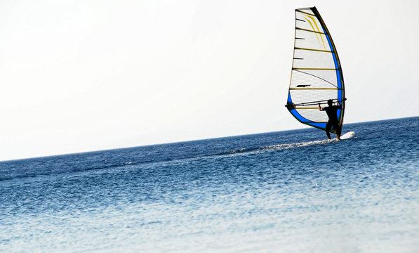 summer surfer silhouette