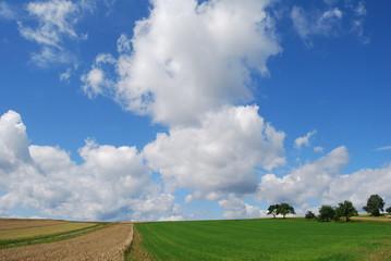 Wiese und Feld mit Wolckenbildung