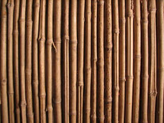 mur en bambou