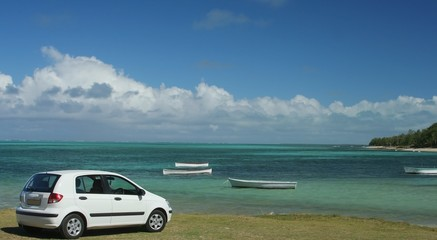 White small car on green grass by the beach