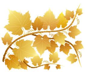 Gold grapevine