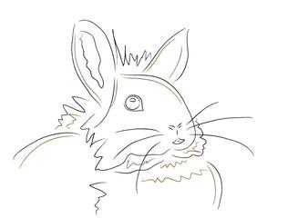 Hase - Bunny