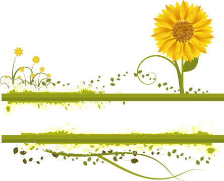 Vector- Floral grunge with sunflower, vines and grass.