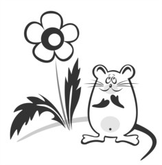 Black-and-white mouse