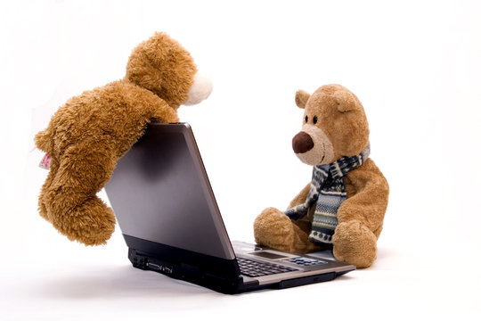 LAPTOP COMPUTER and Teddy bear