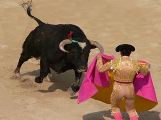 corrida nimes