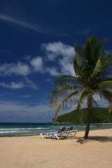 Picturesque Caribbean Beach