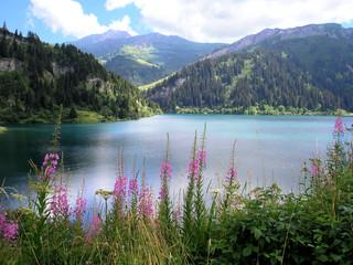 Foto auf AluDibond Gebirge lac de montagne