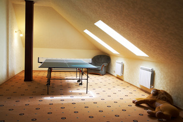 Table for game in ping-pong