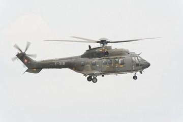 Cougar de l'armée Suisse